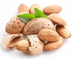 almonds-foods-that-burn-fat