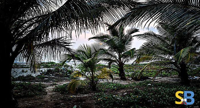 Goa-Tourism-Wildlife