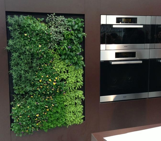 vertical-herb-gardens-in-the-kitchen