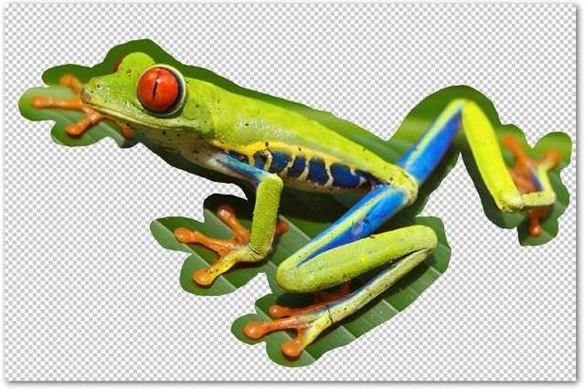 How to Remove a Background Using Photoshop