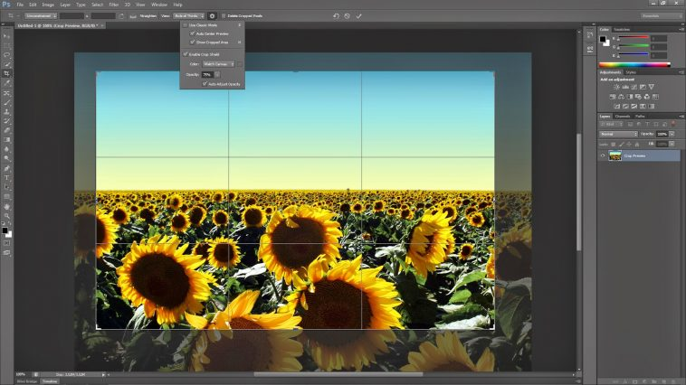 How To Use Crop Tool In Photoshop
